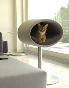 Дом или лежанка для кота?