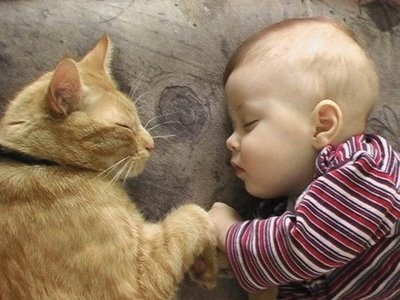 Новорожденный и кошка