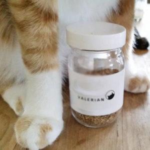 valerian_cats
