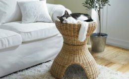 Feline fantasy … IKEA's Bastis cat bed, $59.
