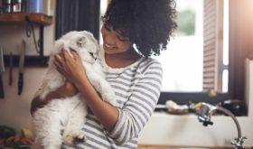 Научные факты, что кошки продлевают человеку жизнь