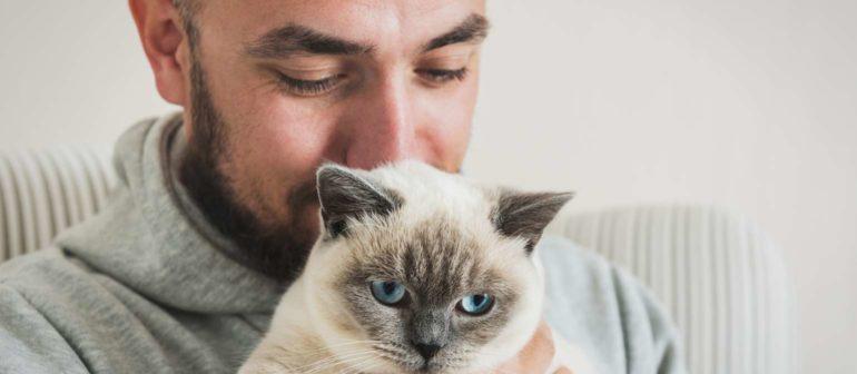 Каких людей любят кошки?