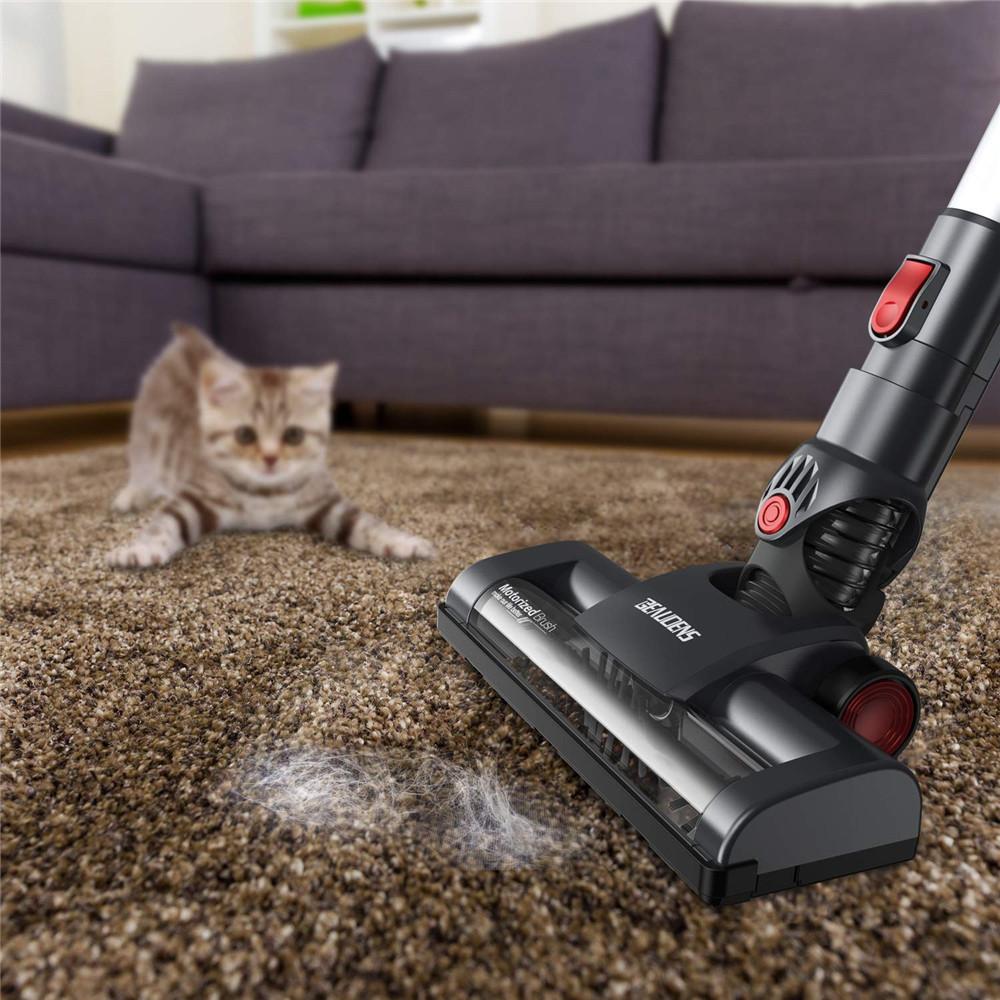 Почему кошки боятся пылесоса?